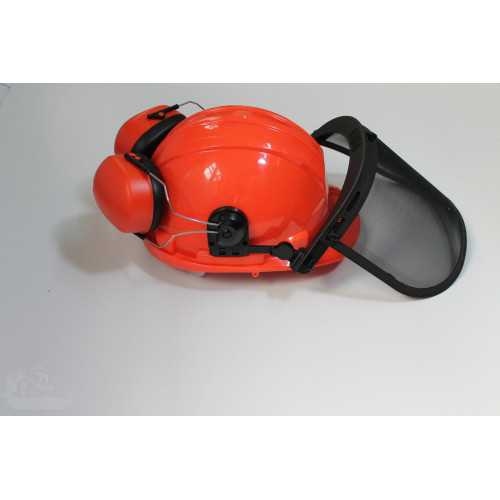 Safety helmet with hearing and face protection