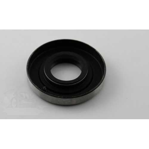 Oil Seal ECHO 10021302830