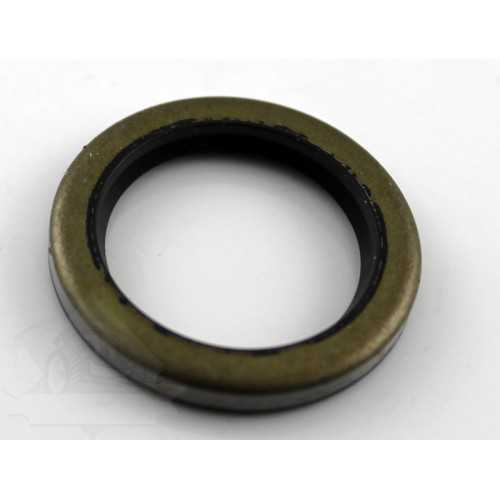Oil Seal BRIGGS & STRATTON 294606